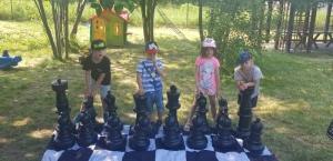 szachy Brykające Tygryski