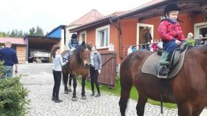 Wycieczka do stadniny koni w Czernej BRYKAJĄCE TYGRYSKI, LEŚNE DUSZKI